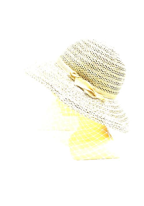 Шляпа VIZIO A-6606 FF2